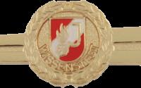 Feuerwehrjugend Wissenstest Gold