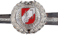 Feuerwehrjugend Wissenstest Silber
